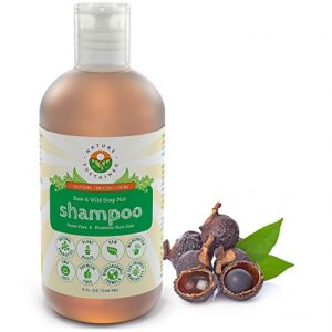 Nature Sustained Raw and Wild Soap Nut Shampoo