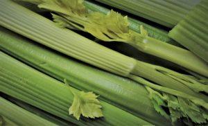 the best juicer for celery